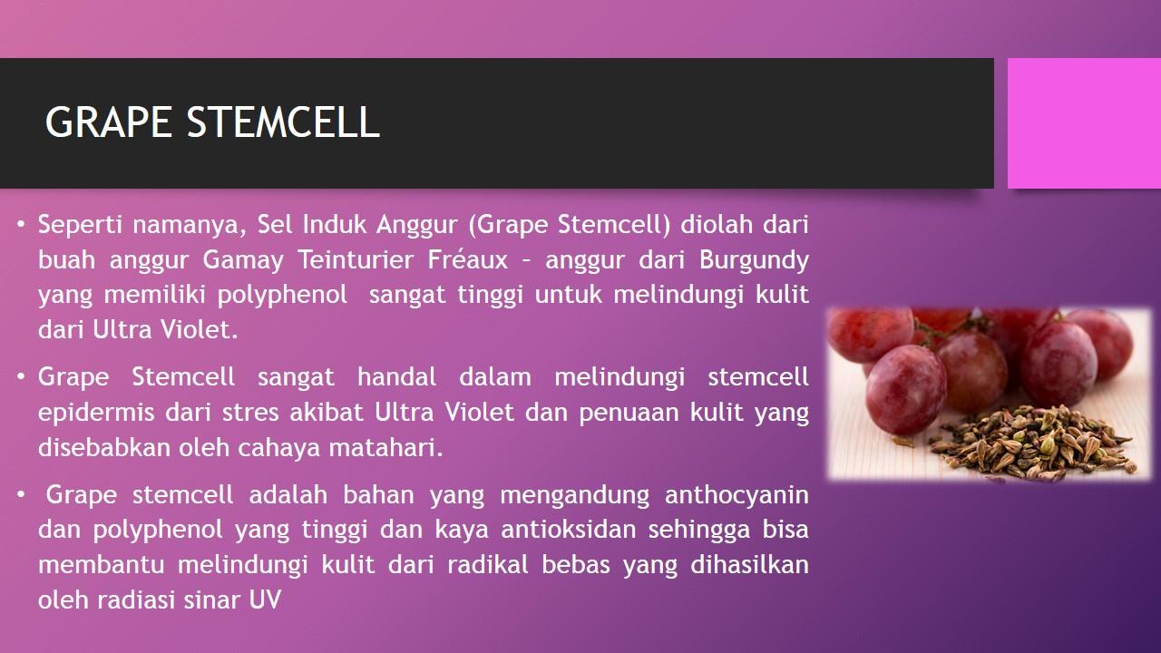 Manfaat Grape Stemcell untuk Kulit