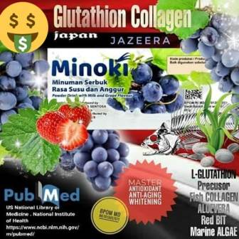Minoki untuk Kecantikan dan Kesehatan dari Dalam